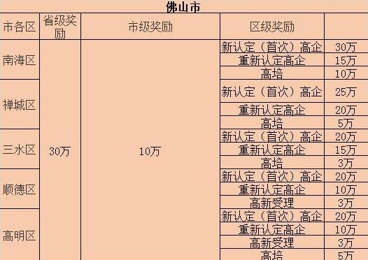 佛山市高新技术企业补助.JPG